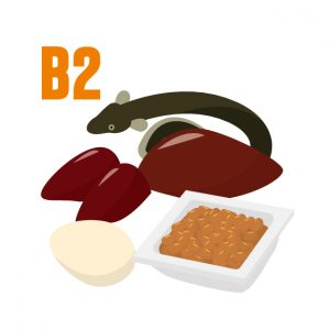 50代女性 眼精疲労 ドライアイ 目に良い食べ物 ビタミンB2