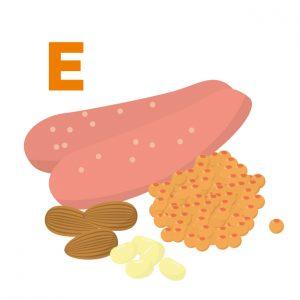 美肌 栄養セラピー 栄養素 ビタミンE