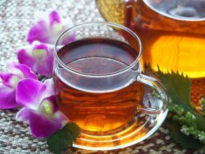 美肌になるハーブティー 柿の葉茶