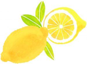 美肌と健康 レモン ポリフェノール