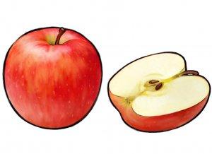 糖化 酸化 食べ物 りんご