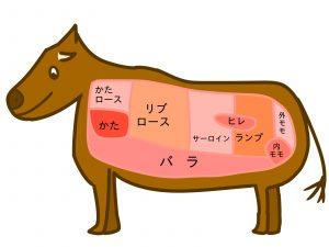 美肌を作る肉の法則! 肉食 健康パワー