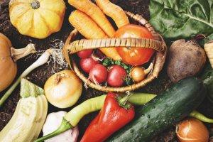 50代女性 目の病気 白内障予防に食べたい野菜