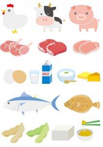 50代女性 美肌になる食べ物 タンパク質を含む食品の種類