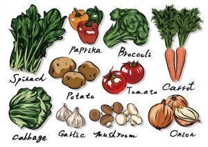 プレバイオティクスを多く含む食品の絵