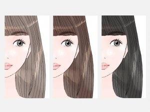 白髪染めの種類のイメージ